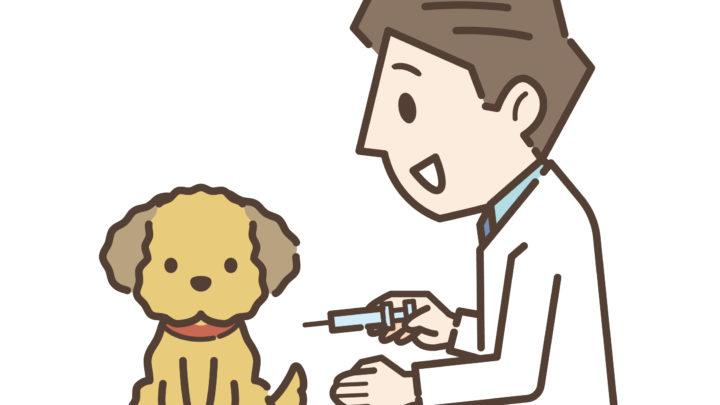 狂犬病ワクチン アイキャッチ